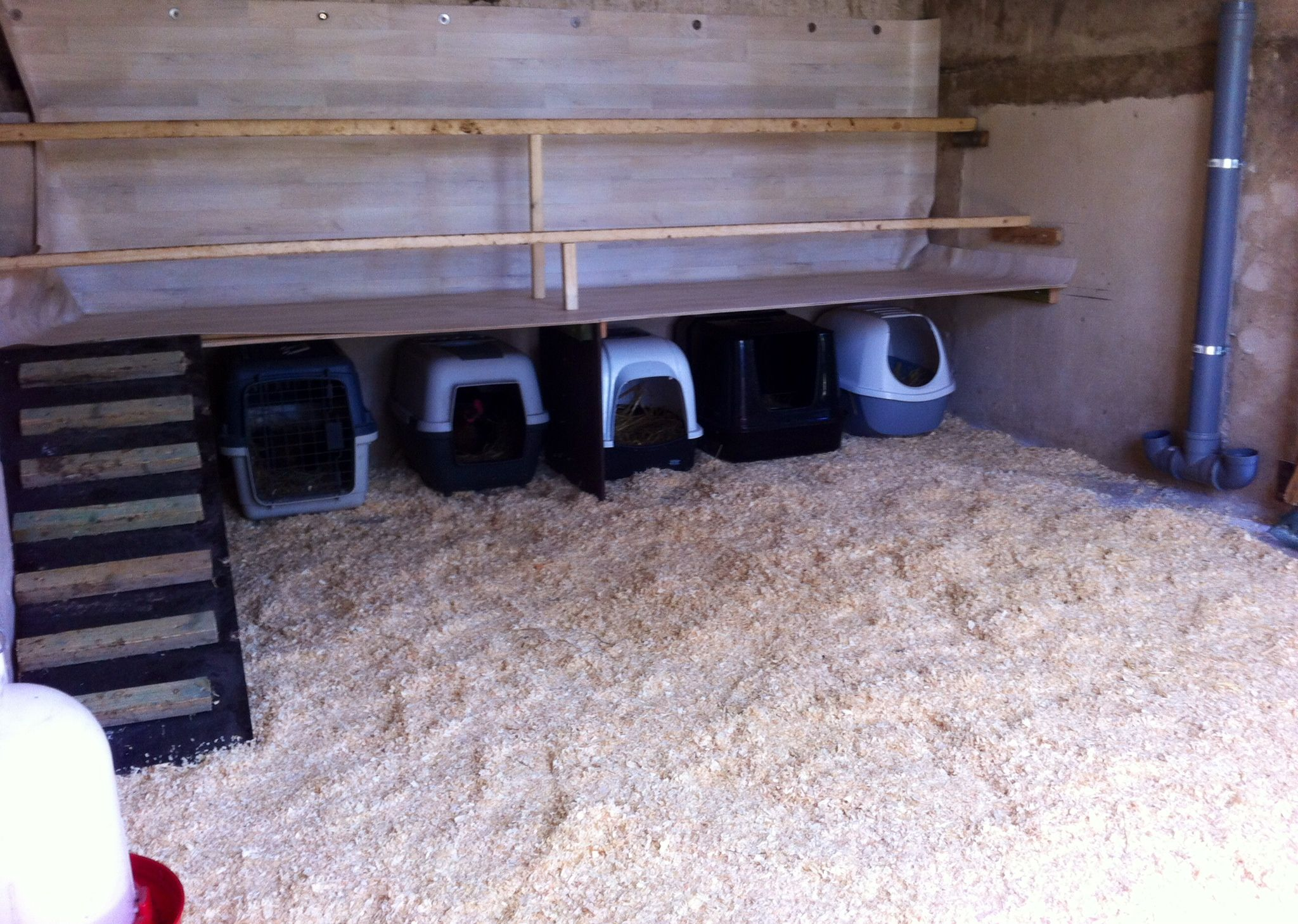 My Easy To Clean Chicken Coop Vinyl Flooring Underneath The Chicken Roosts Cat Litter Boxes Serving As Nest Best Chicken Coop Chicken Roost Easy Chicken Coop