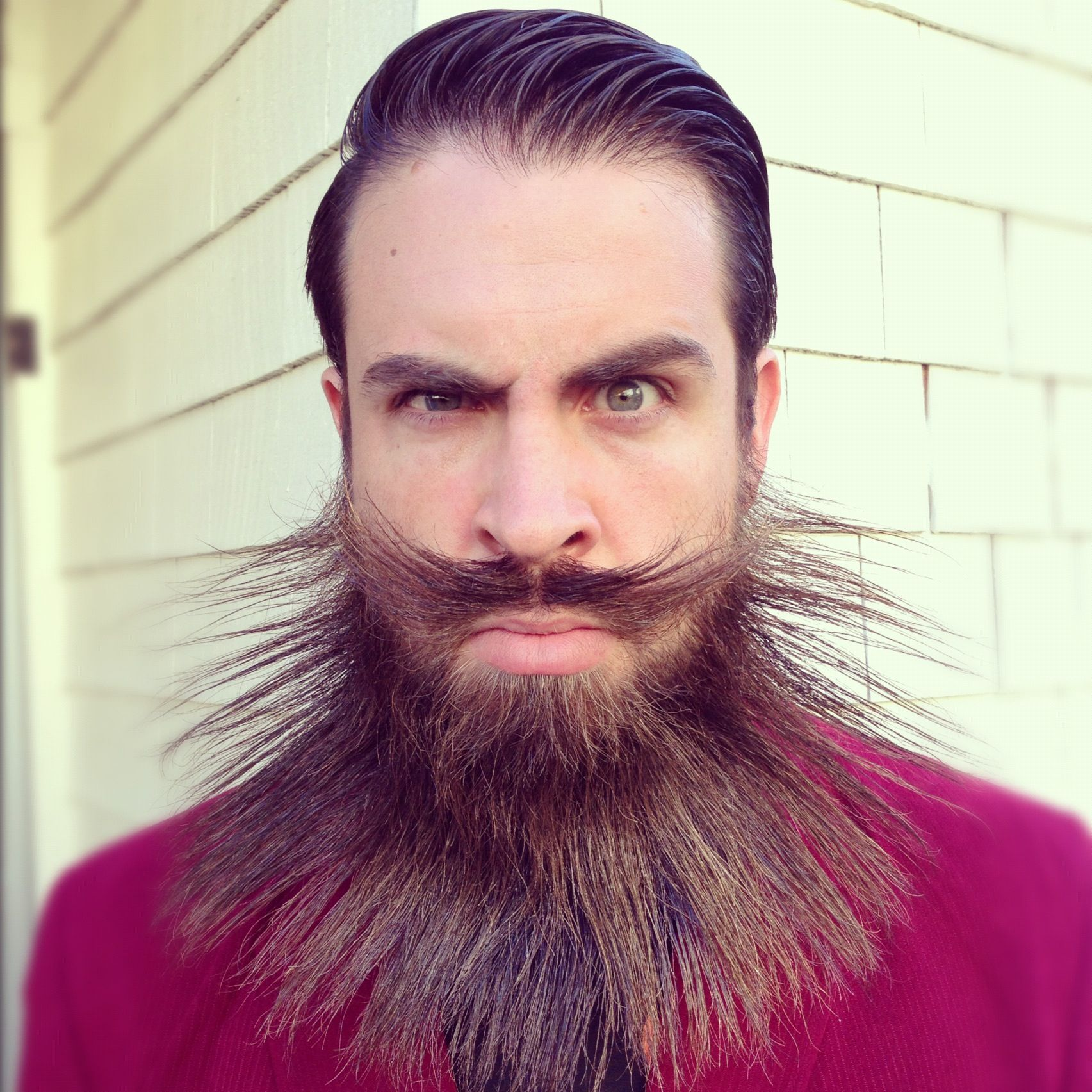 crazy fashionable beard design beard titled the manly main man mane hair art
