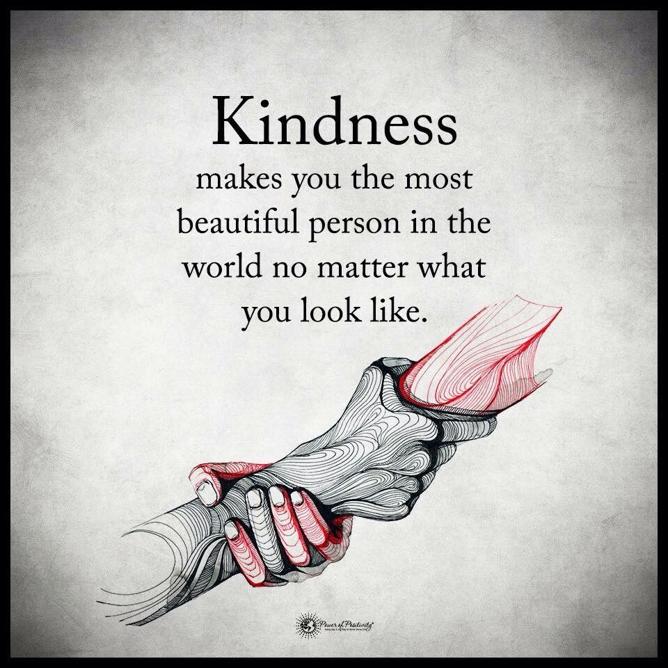 440 kindness quotes that will make you a better person - 736×736