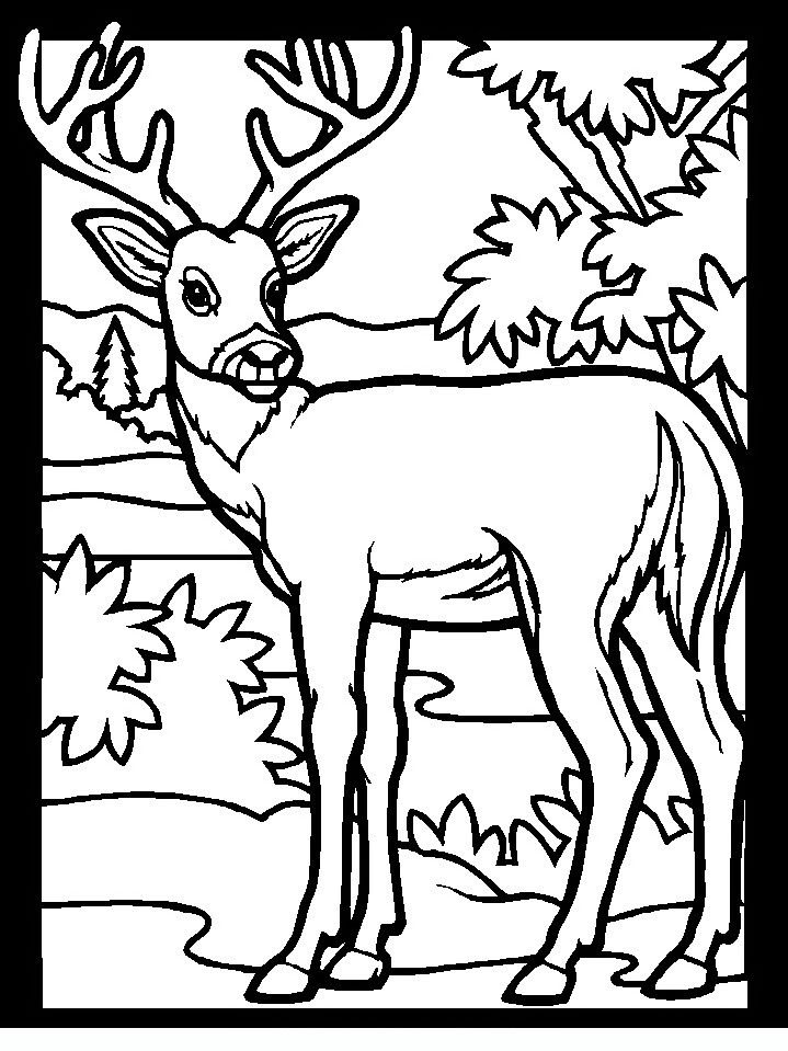 http://www.coloringpagesforadult.com/coloring_pages/dettagli_wood ...