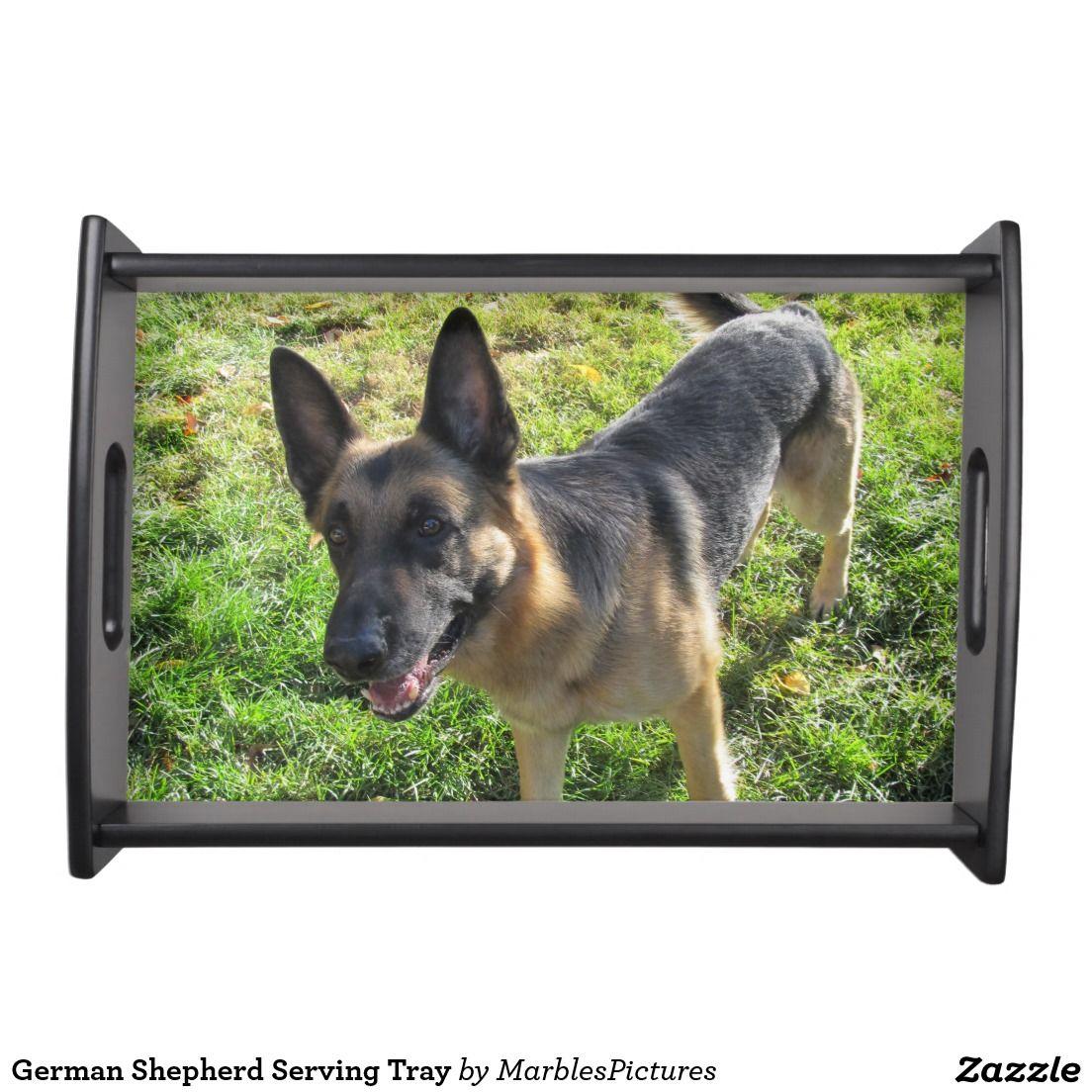 German shepherd serving tray german shepherd dogs food