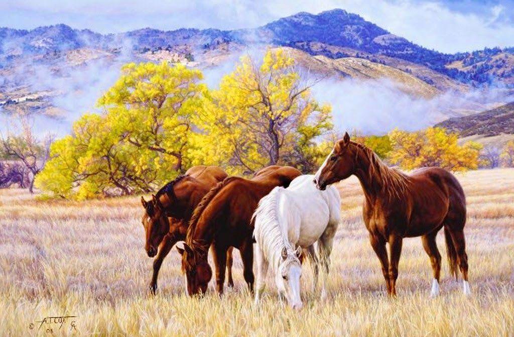 Paisajes De Animales: Hermosos-paisajes-con-caballos-del-campo