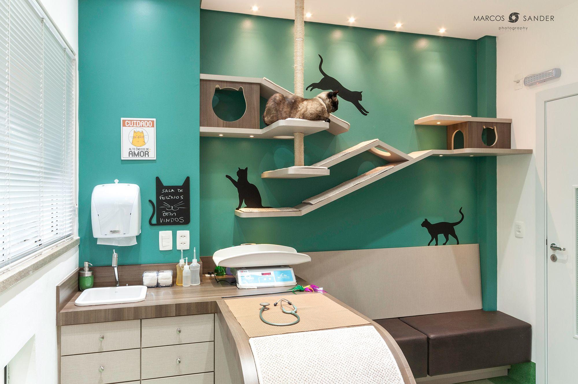 19+ Four corners animal hospital ideas in 2021