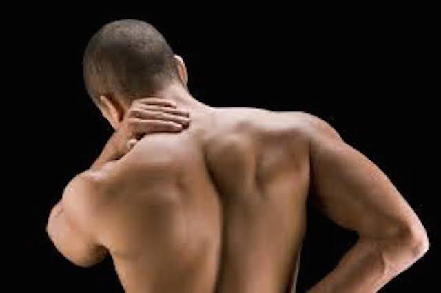 Evoluzione e mal di schiena - Dolore alla schiena, Muscoli..