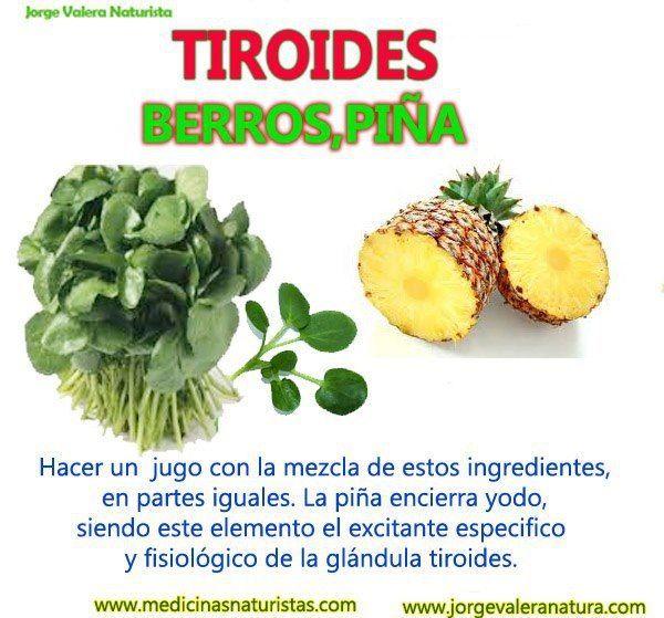 Tiroides | MEDICINA NATURAL | Pinterest | Tiroides, Salud y Medicina ...