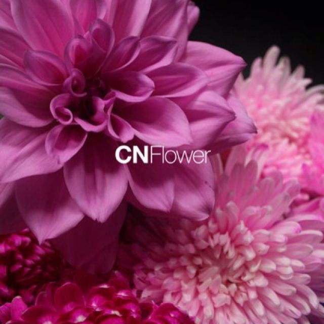 Beautiful Floral Arrangements beautiful floral arrangement from cn flower http://www.cnflower