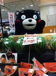 「熊本スイカ」の画像検索結果