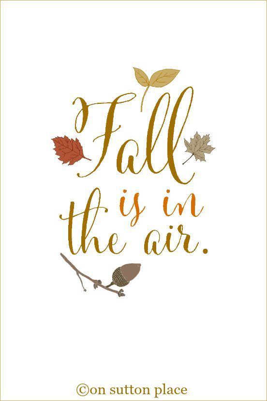 10 More Fall Printables - On Sutton Place