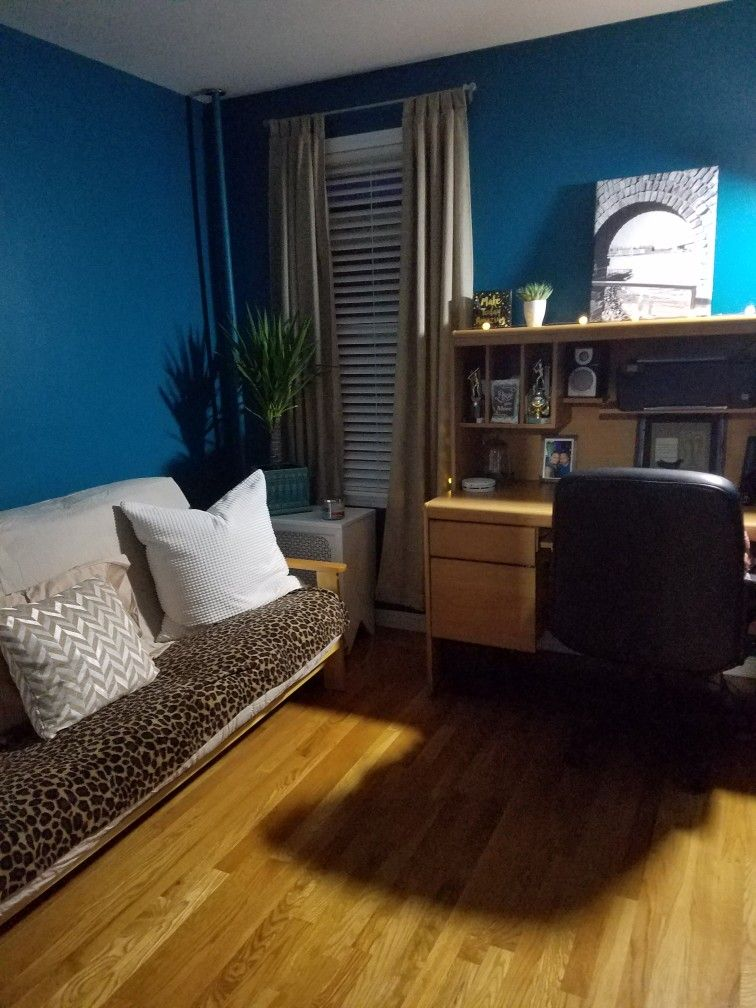 Intense teal by Sherwin Williams Guest bedroom | Guest ...