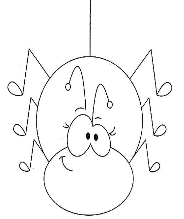 spider of animal coloring page dia das bruxas