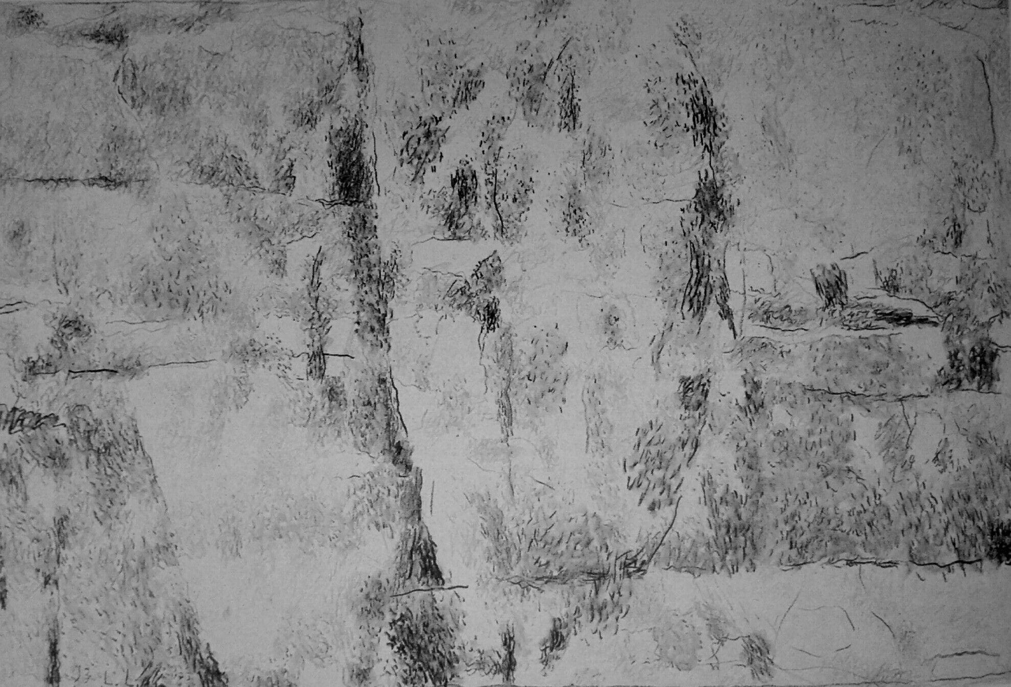Bosco Sacro carboncino su carta 750x1100mm 1991 Mac,n Monsummano
