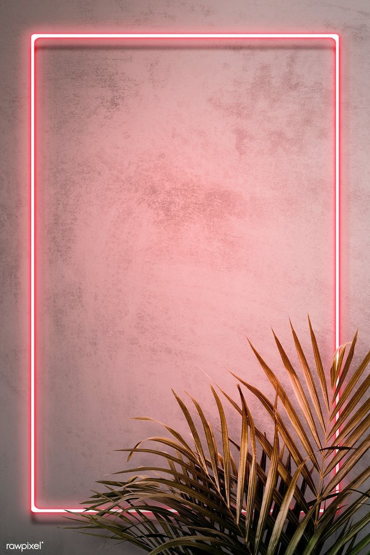 Download premium illustration of Pink neon frame on a wall with tropical