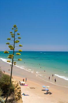 15 Paraísos En La Costa De La Luz Las Mejores Playas De Cádiz Costa De La Luz Playa Cadiz Viajar Por España
