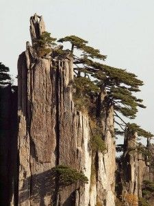 Huangshan Mountains, China http://www.walkopedia.net/walks/display-walk.asp?WalkID=9&WalkName=Huangshan
