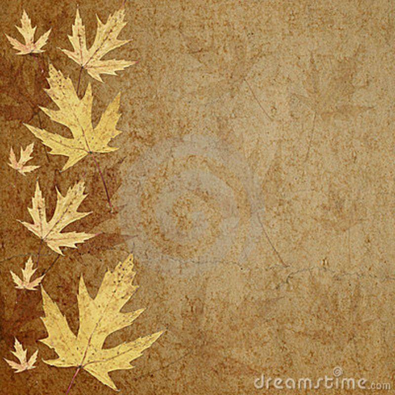 leaf border parchment paper Blank parchment or antique paper - blank paper background