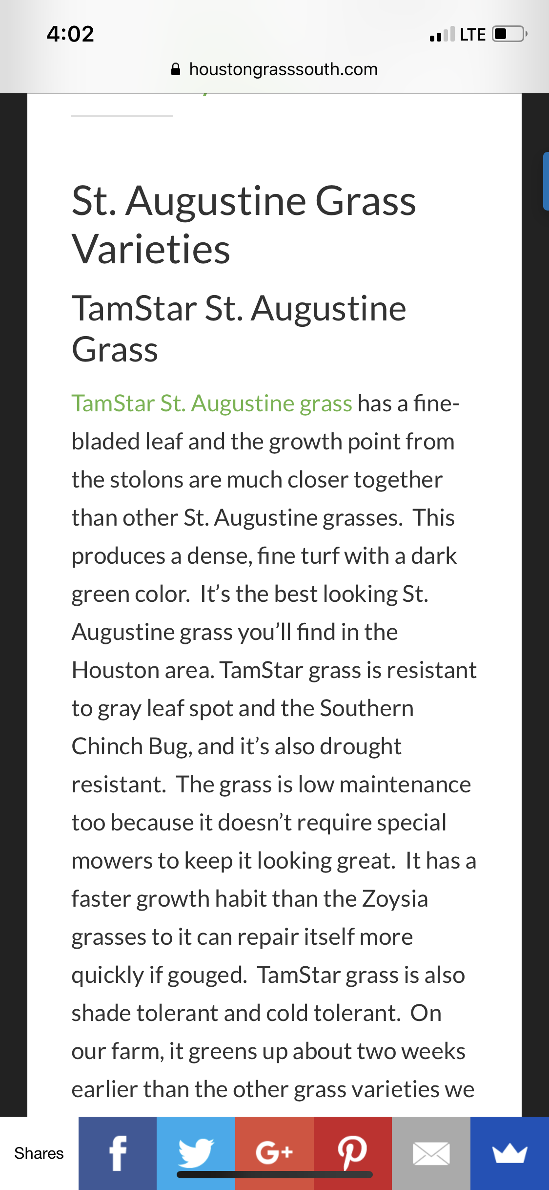 St. Augustine Grass St augustine grass, Grass, Katy tx