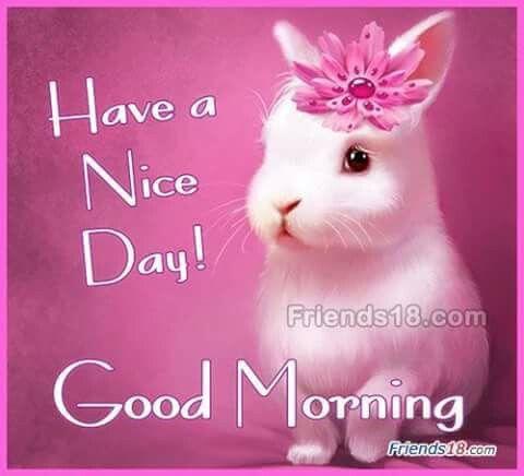 Pin By Sanjay Kuldipake On Good Morning Good Morning Cards Good Morning Greetings Good Morning Images Hd