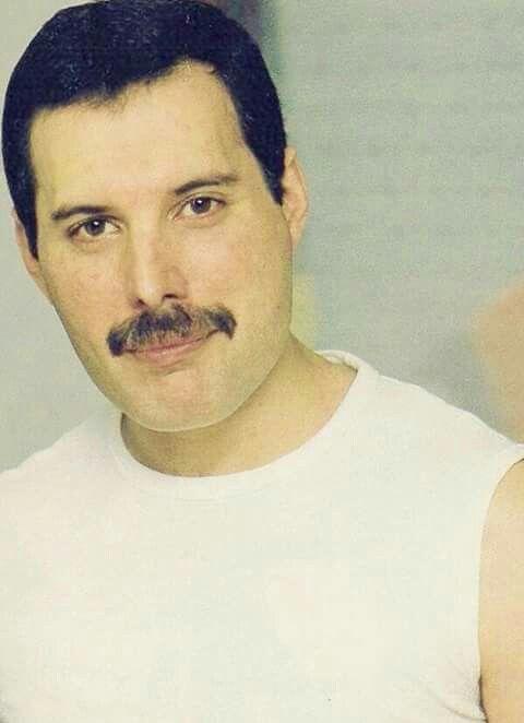 Pin De Sara Gabriela En Freddie Mercury 3 Freddie Mercury Fredy Mercury John Deacon