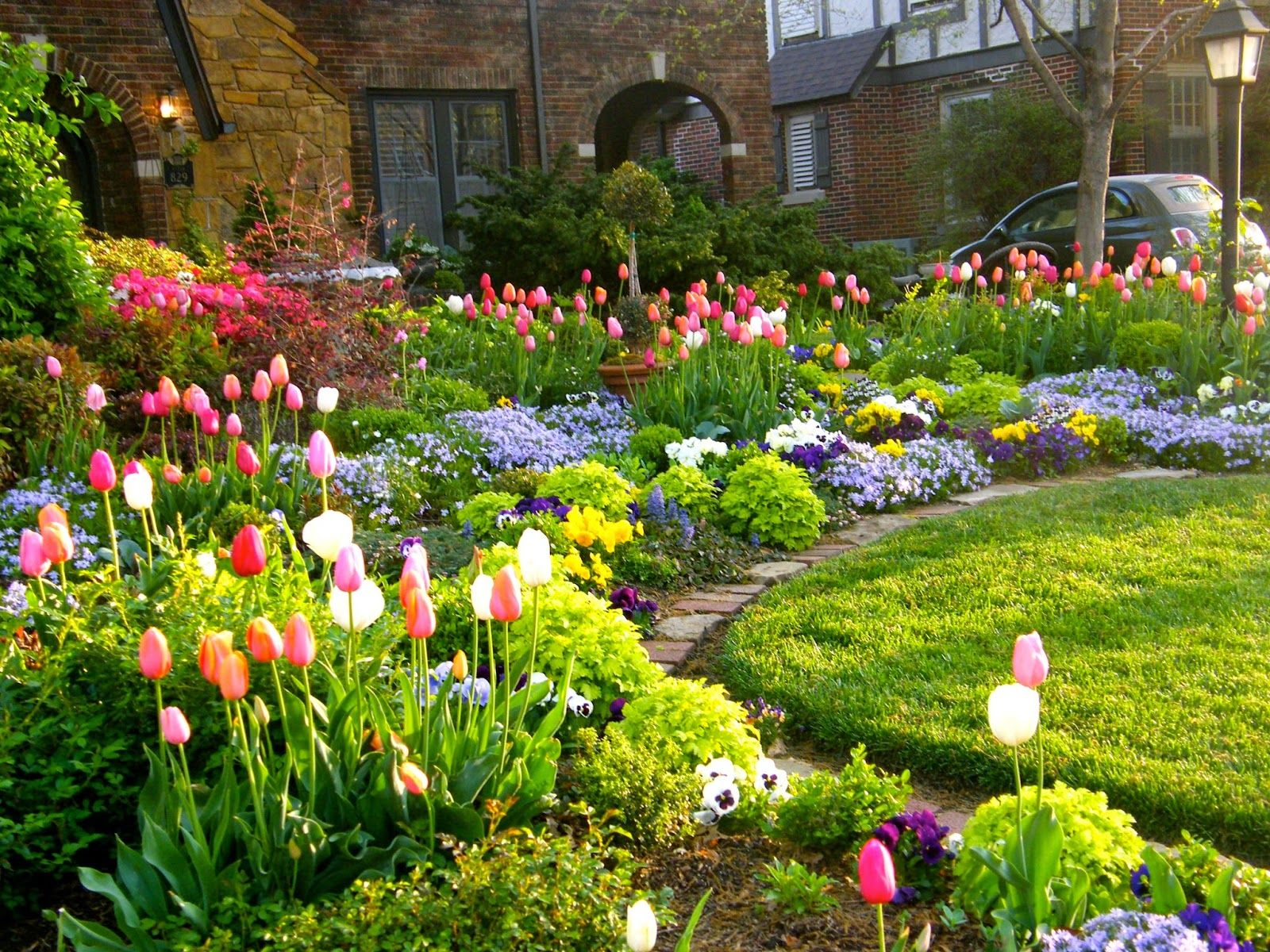 Tulip season front yard garden curb appeal flowers for Flower garden landscape