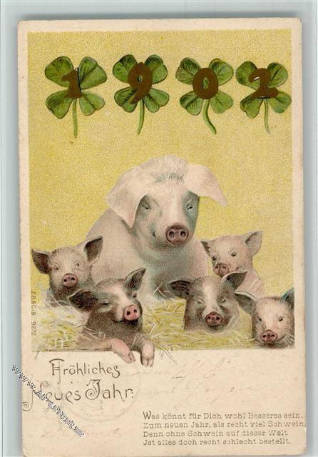 Schweine Familie Und Gedicht Neujahr Schwein Creatures Und Nature
