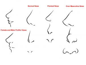 How To Draw Anime Noses Step 1
