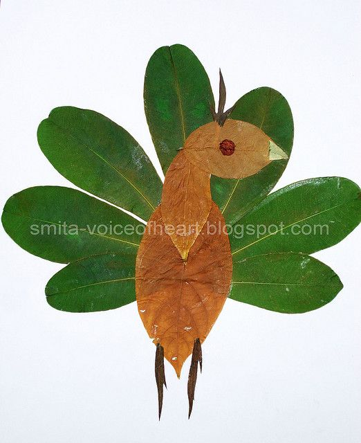 peacock | Crafts | Leaf crafts, Leaves, Leaf art