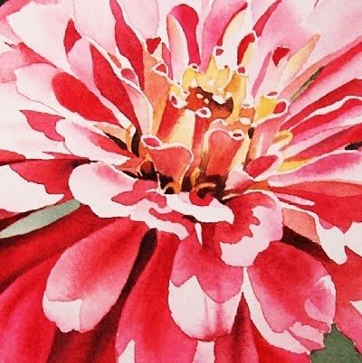 Zinnia Zenith - Watercolor, painting by artist Jacqueline Gnott