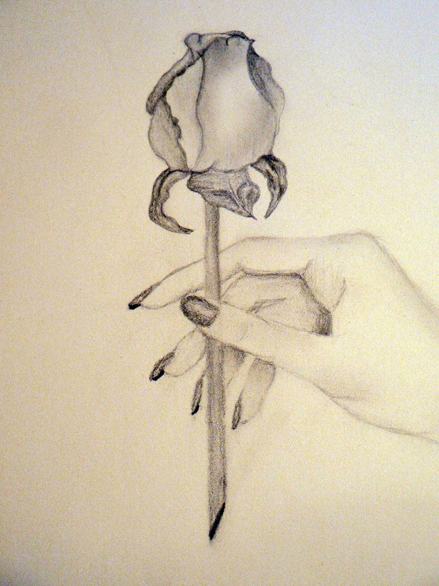 Image Result For Drawing Of The Skeleton Hand Holding Flower Hands Holding Flowers Skeleton Illustration Drawings