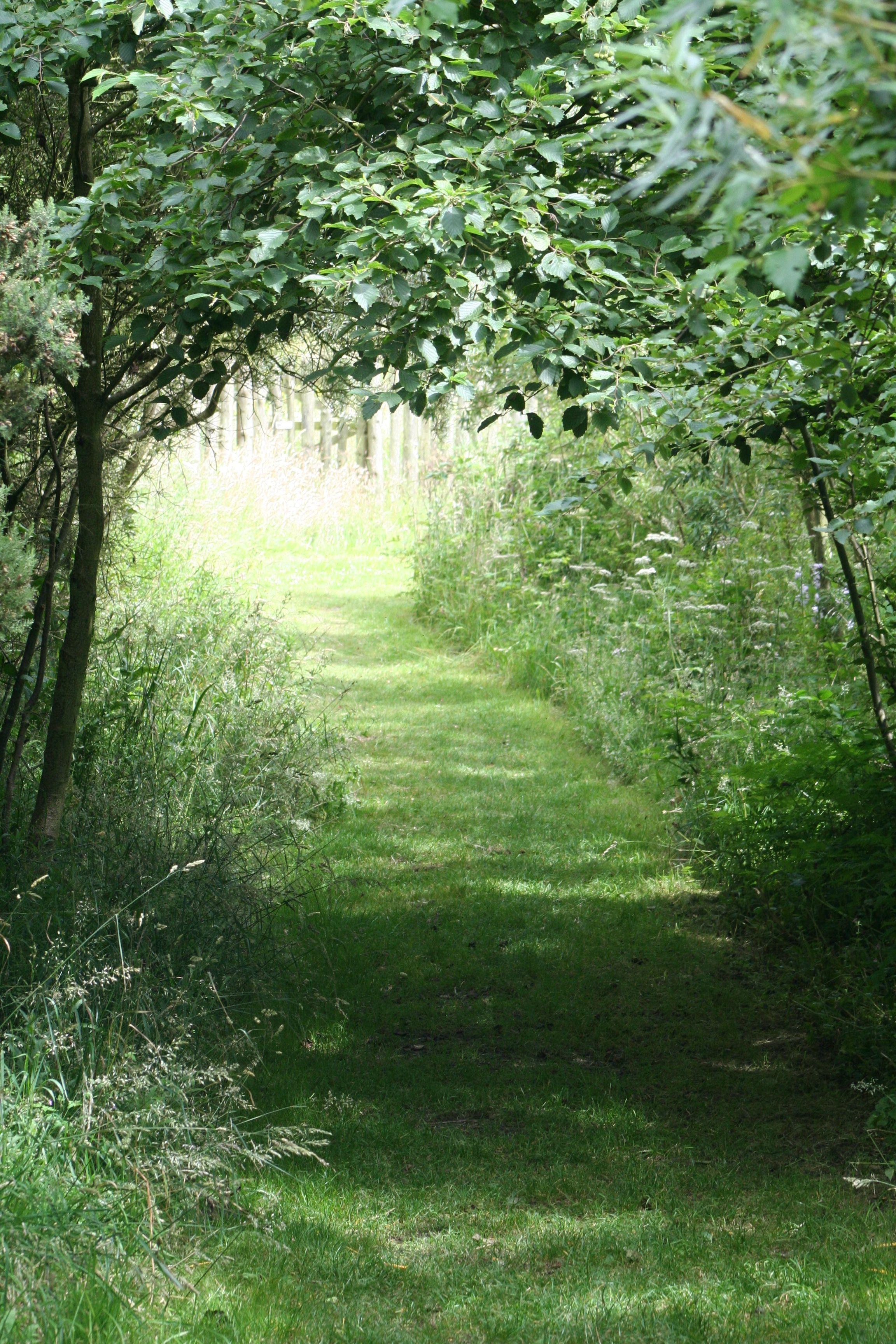 Hauxley dream garden country roads photography