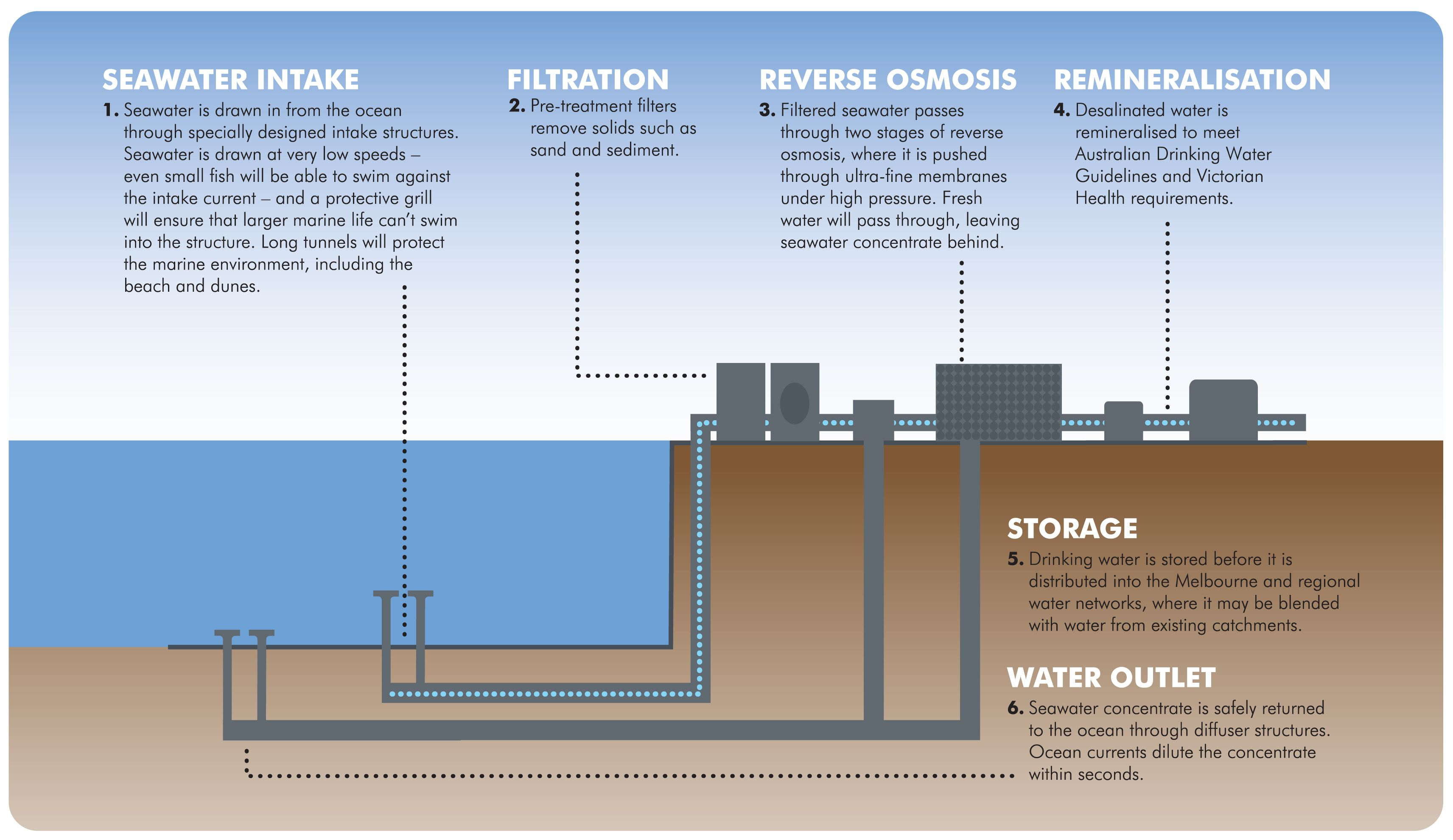 desalination graphic | Desalination | Earth surface, Plants