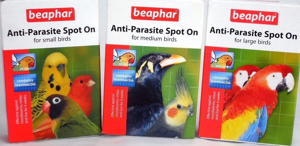 Details About Beaphar Anti Parasite Spot On For Small Medium Large Caged Birds Bird Spot On Birds Small Birds Parasite