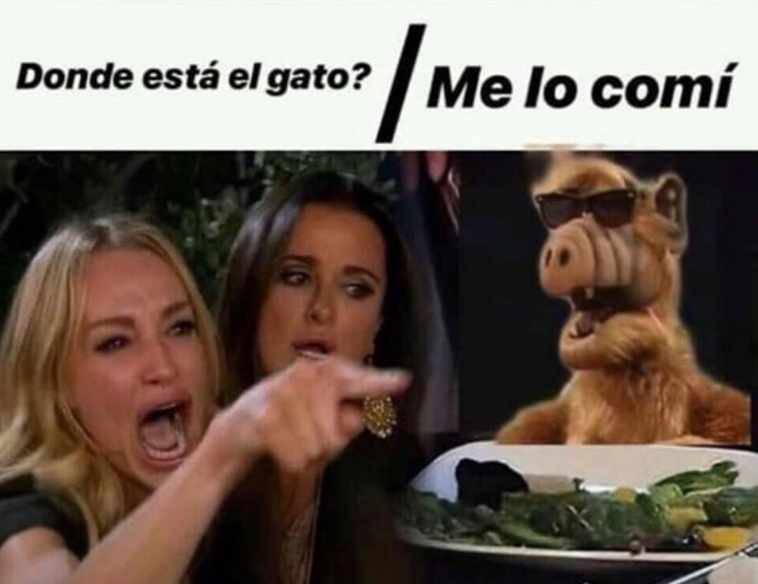 Imagenes De Buenos Dias Lunes Feliz Inicio De Semana Memes De Amor Chistosos Memes Chistosisimos Imagenes Graciosas