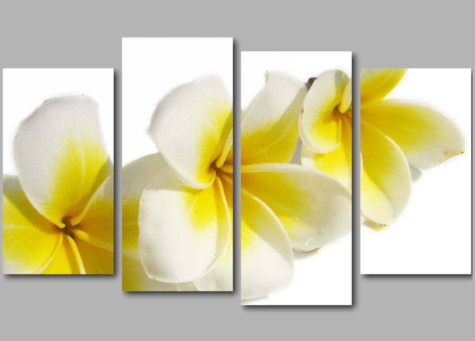 Xl white and yellow flowers 4 panel #split #floral canvas #picture ...