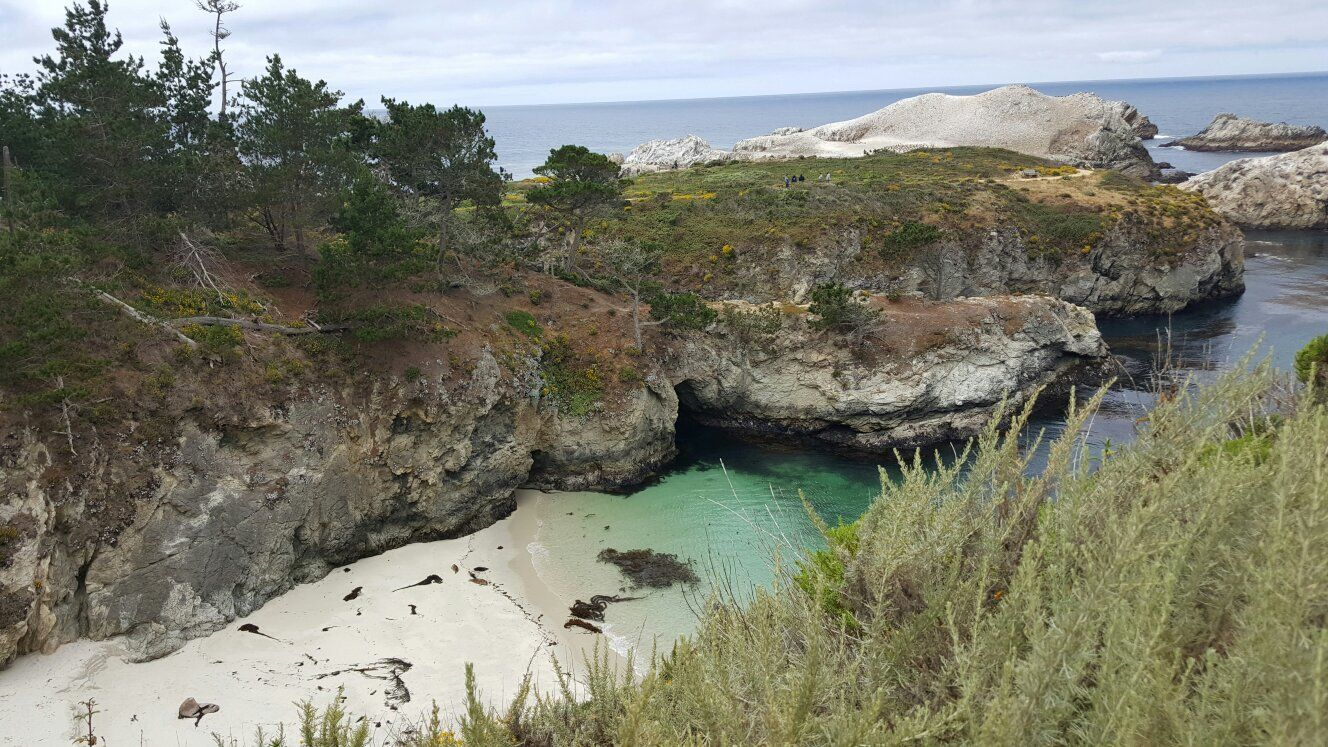 Point Lobos State Reserve Carmel Ca Top Tips Before You Go