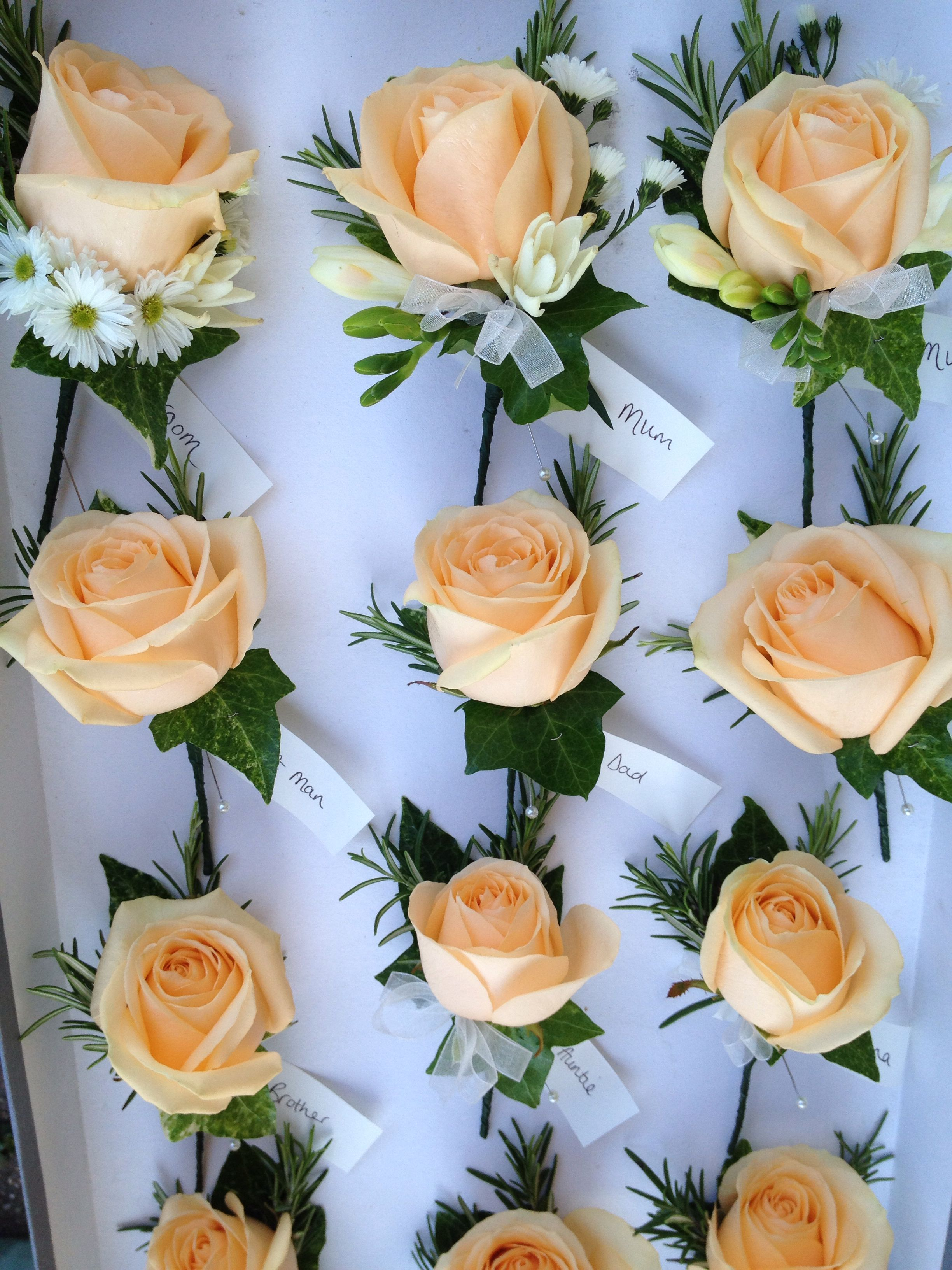 pretty peach avalanche rose buttonholes with a little bit of