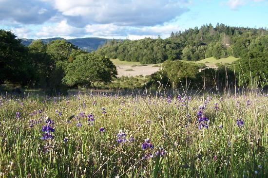 Annadel State Park  Add to trip  6201 Channel Drive, Santa Rosa, CA 95409
