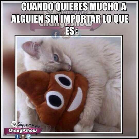 Ajajajaja El Amor Es Ciego Crazy Funny Memes Pokemon Funny Funny Memes