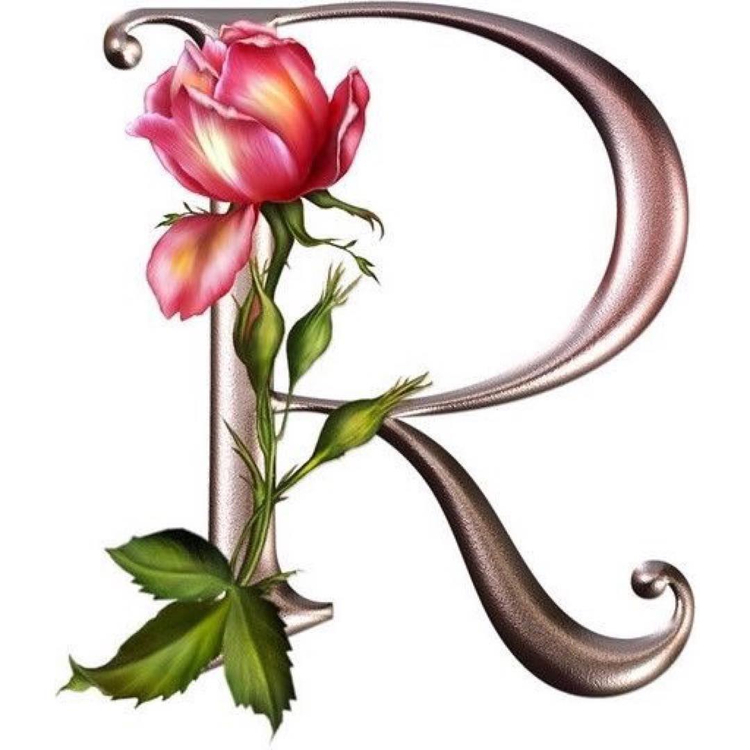 Pin by RAJ Chenna on flowers Flower alphabet, Alphabet