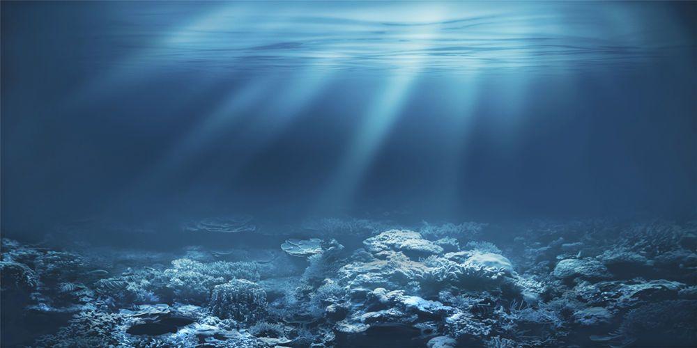 aquarium background fish tank poster
