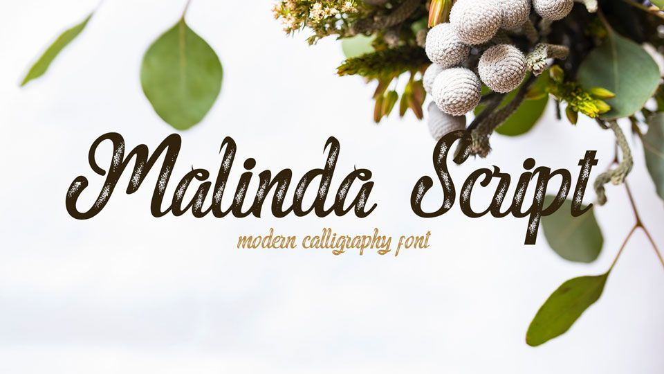 Malinda Script #freefonts | Free Fonts | Script fonts, Fonts