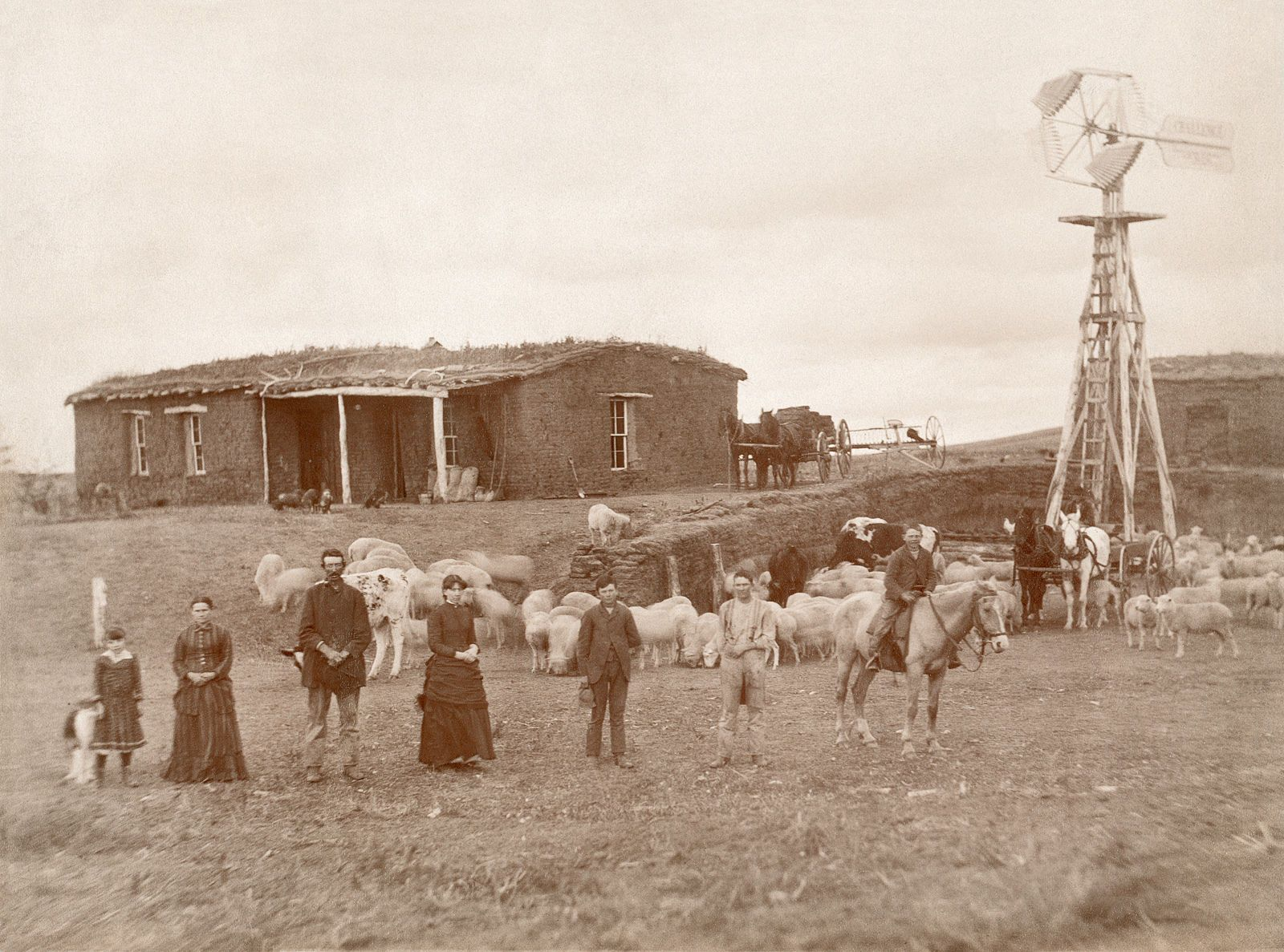 Details About Sod House Family Windmill Sargent Ne 1886 Photo