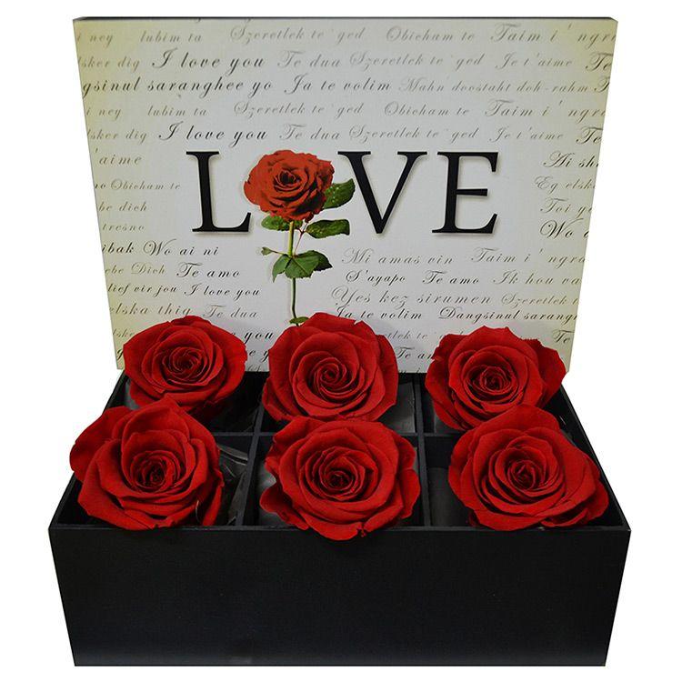 Love Rosas Encantadas Vermelhas Rosas Rosa Encantada E