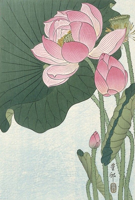 'Lotus Flower - Japanese Block Print' Art Print by fineearth