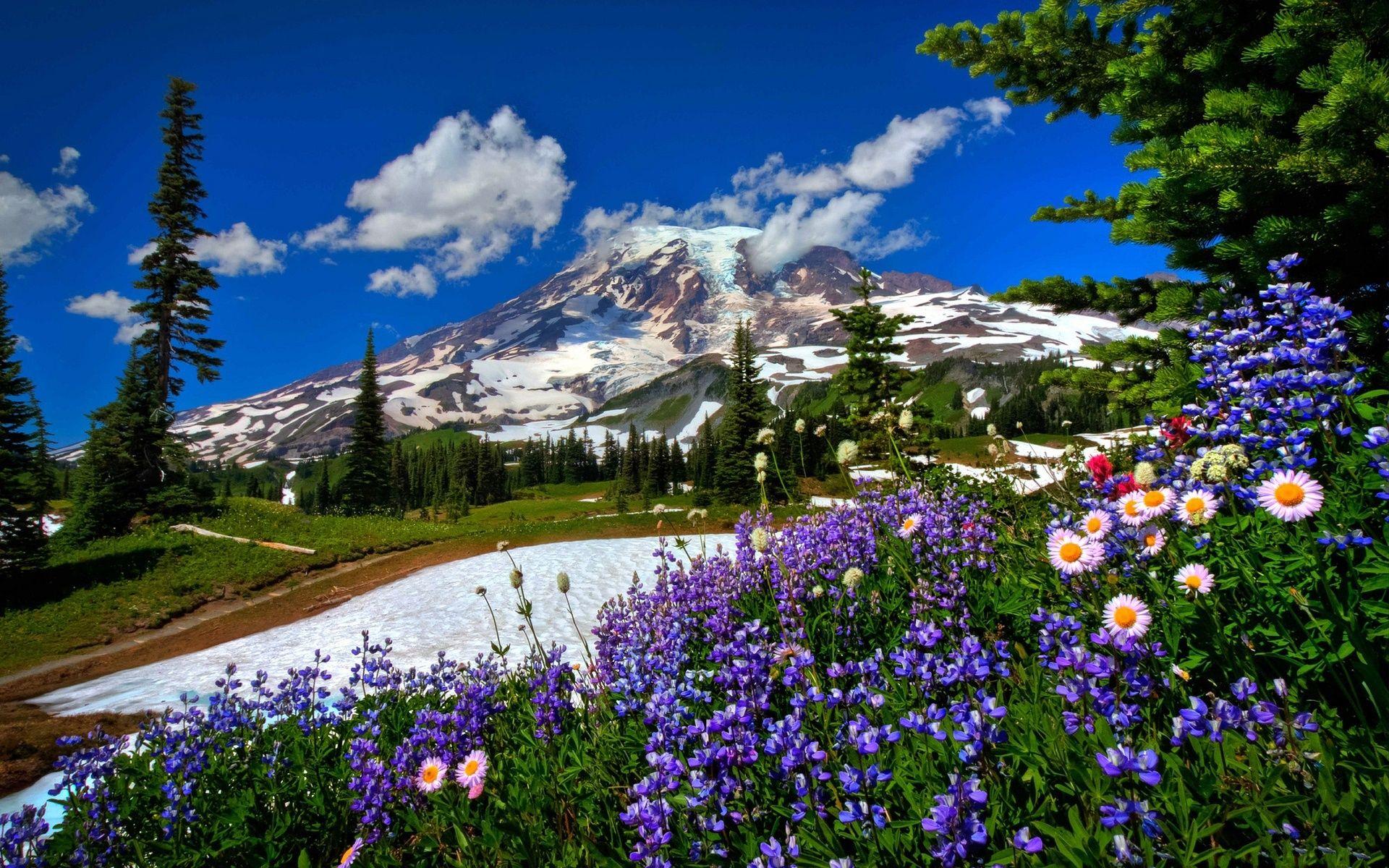 Spring Mountain Landscape Beautiful Landscapes Beautiful Nature Scenery