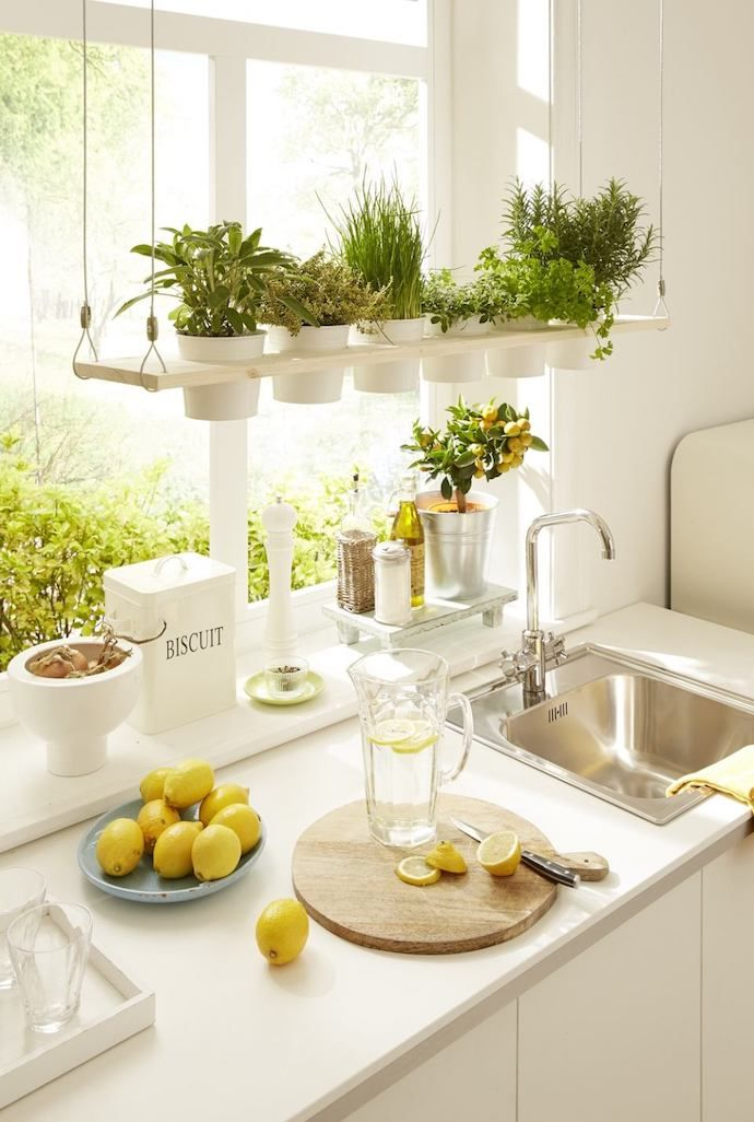 8 Creative Indoor Garden Ideas For Anyone Who Doesn T Have Outdoor