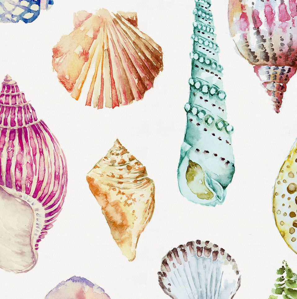 Watercolor Seashells Fabric By The Yard In 2020 Watercolor Fabric Seashell Drawing Seashell Painting