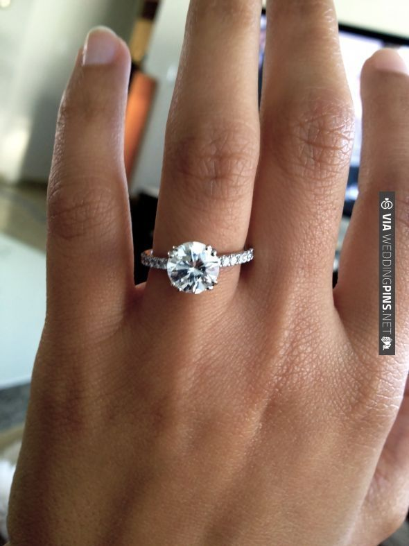 Gorgeous Round Solitaire Raised Diamond Band I Love The Big Diamond With The Thin Band Wedding Rings Engagement Solitare Engagement Rings Pave Diamond Band