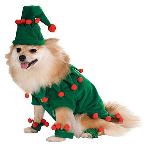 Pomeranian Dog In An Elf Costume