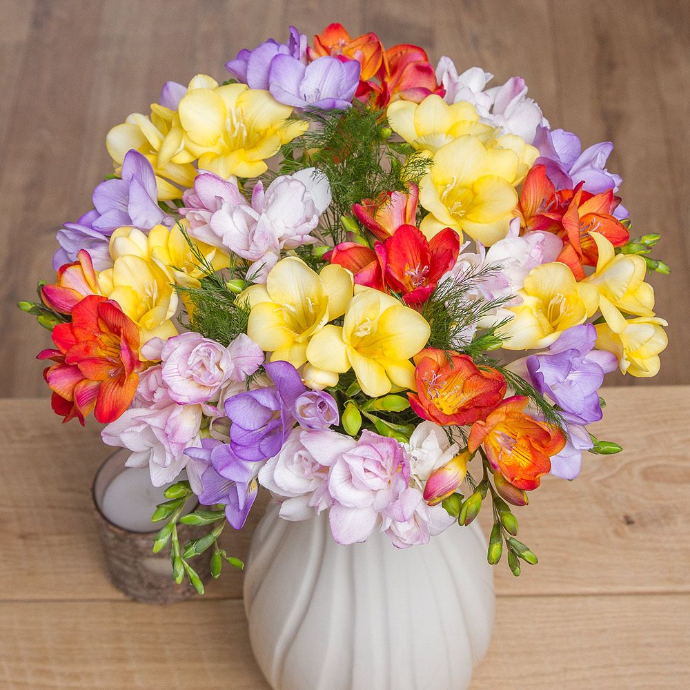 Fragrant freesias flowers delivered and flowers fragrant freesias flowers delivered by bunches izmirmasajfo Gallery