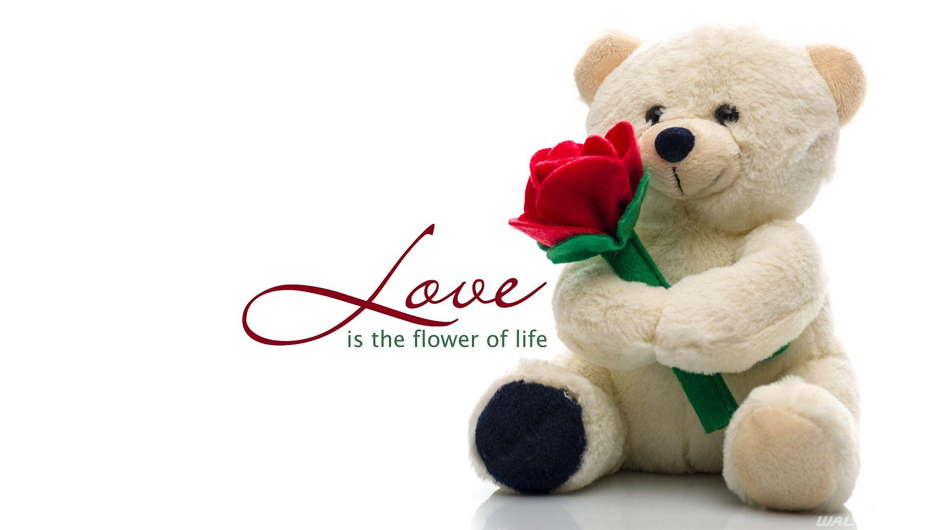 Cute Teddy Bear Love Wallpaper Hd Desktop Wallpapers Love Love